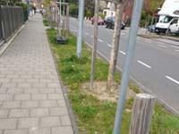 Verbesserung des Ortsbildes in Zündorf